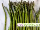 Chřest (Asparagus officinalis)